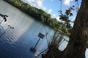 See und Bäume am Ufer