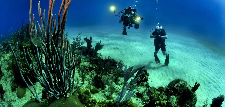 Zwei Taucher untere Wasser