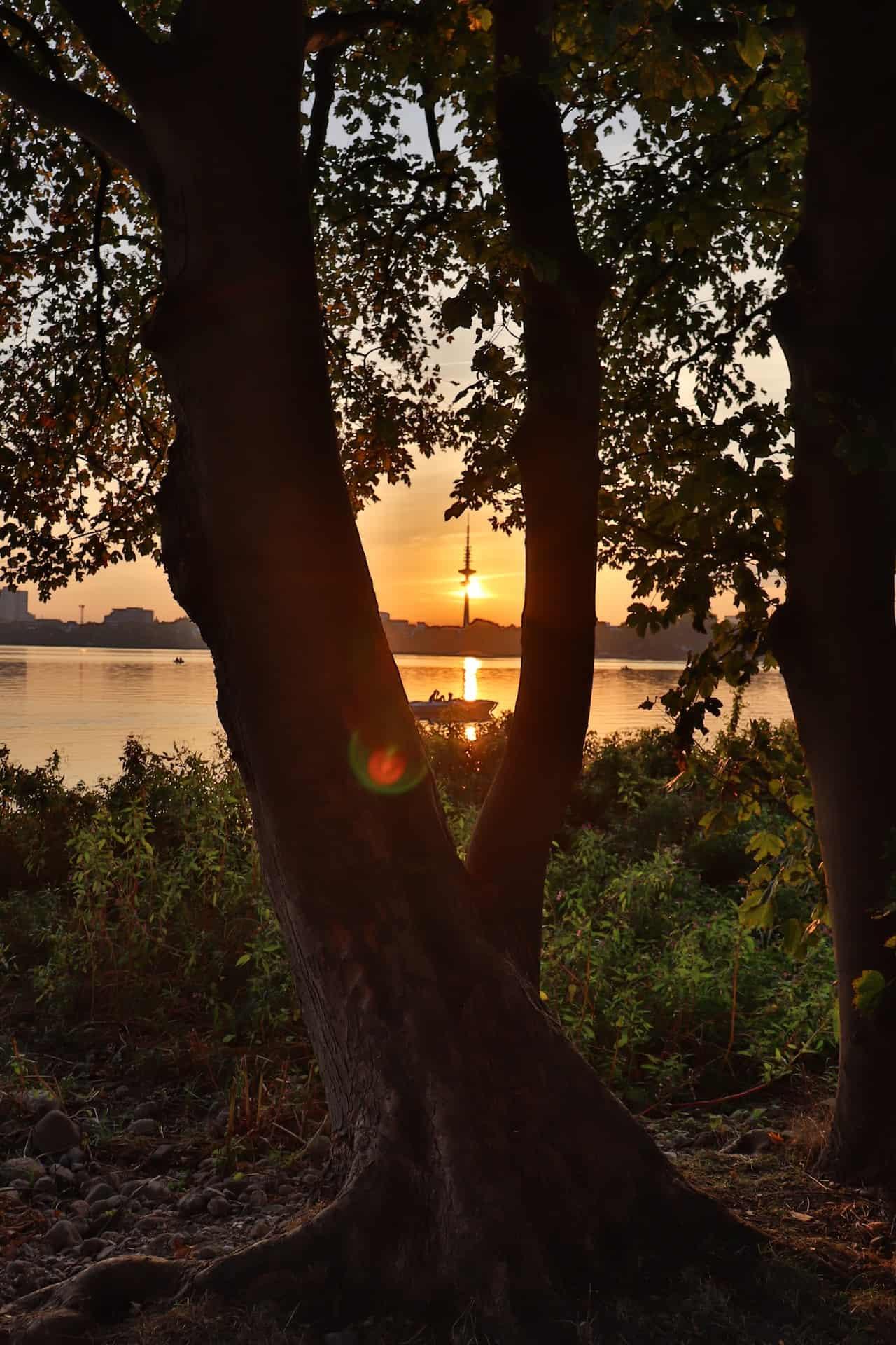 Die Alster in Hamburg mit Sonnenuntergang