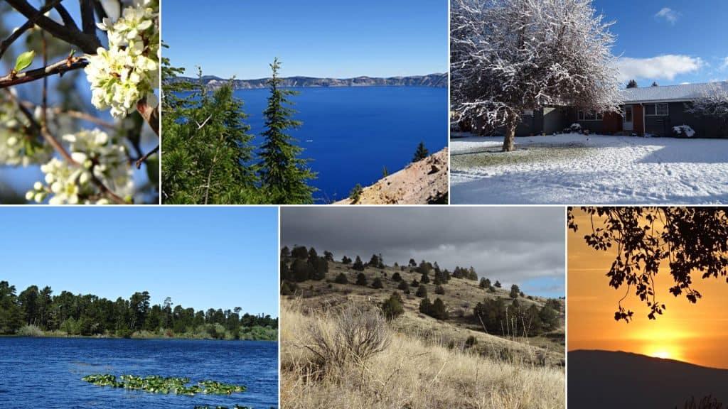Collage aus Bildern aus Oregon