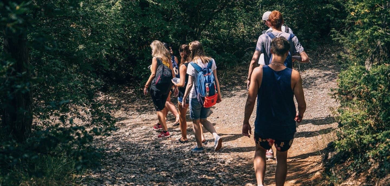Junge Menschen laufen einen Waldweg entlang.