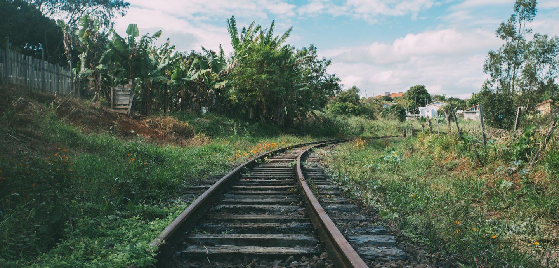 Bahnschienen im Gruenen